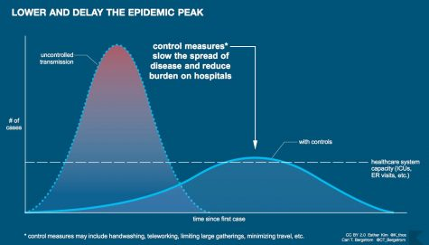 This picture depicts what the government is trying to adjust, it shows how flattening the curve will help our health care system.